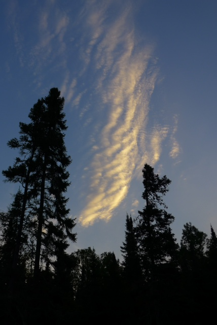 High cirrus clouds over trees in Grand Marais, Minnesota