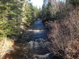 picture of Kadunce River taken from the bridge on Highway 61