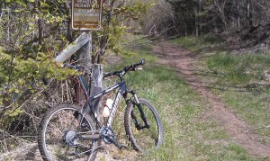 Picture of a mountain bike leaning against a tree at the trailhead on the way to Pincushion Overlook