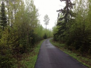 Picture of road with trees greened out on both sides