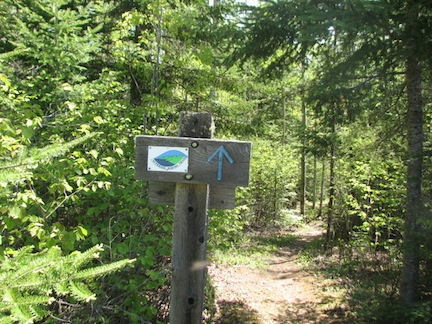 Superior-Hiking-Trail-Forest-Road-115-Trail-Head