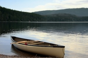 picture of a canoe on the shore of a lake with trees in the background