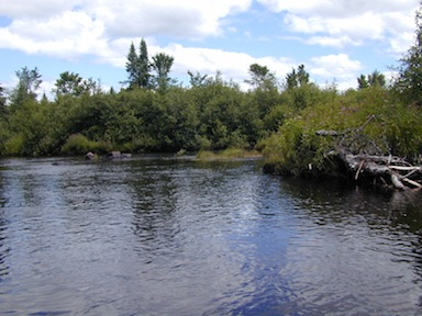 Picture of the Brule River in Cook County, Minnesota