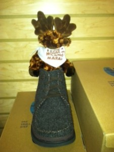 """Picture of a small stuffed moose """"hiding"""" in a shoe"""