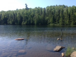 Picture of lake with trees in the background and rocks in the foreground