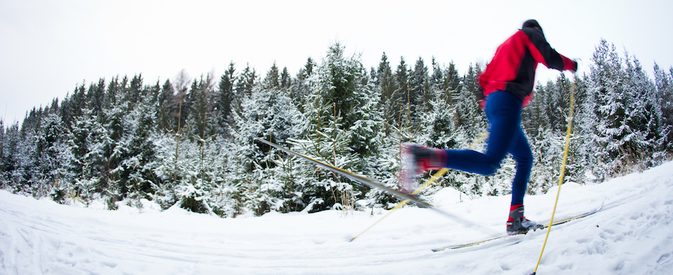 Picture of Nordic Skier skiing very fast