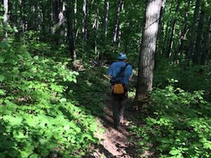 Picture of the back of Jack as he is hiking to the end of the SHT